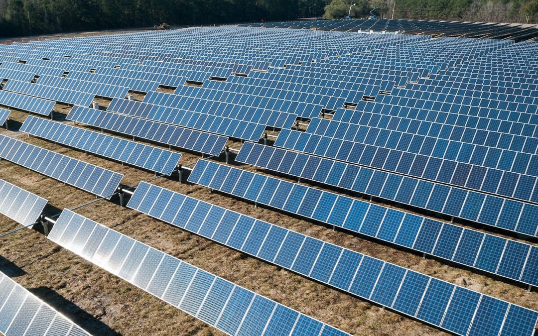 First farm-based solar power plant comes up in Rajasthan