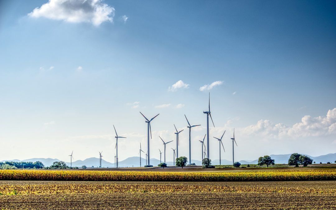 MAINSTREAMING RENEWABLE ENERGY IN INDIA